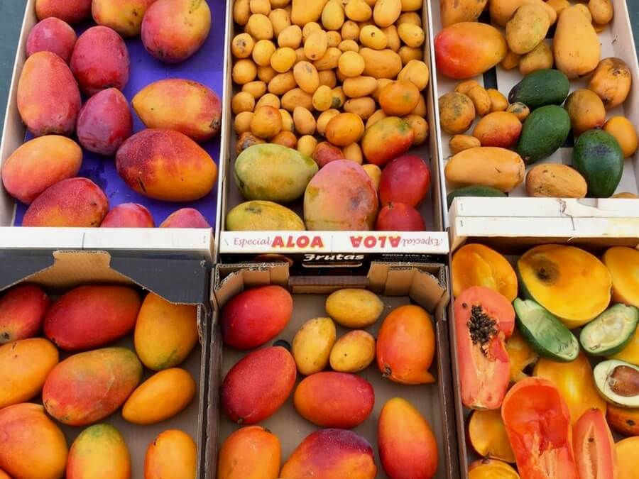 Several boxes of tree-ripened delicous mangoes in the South of Spain. Probably the best fruit in Europe!